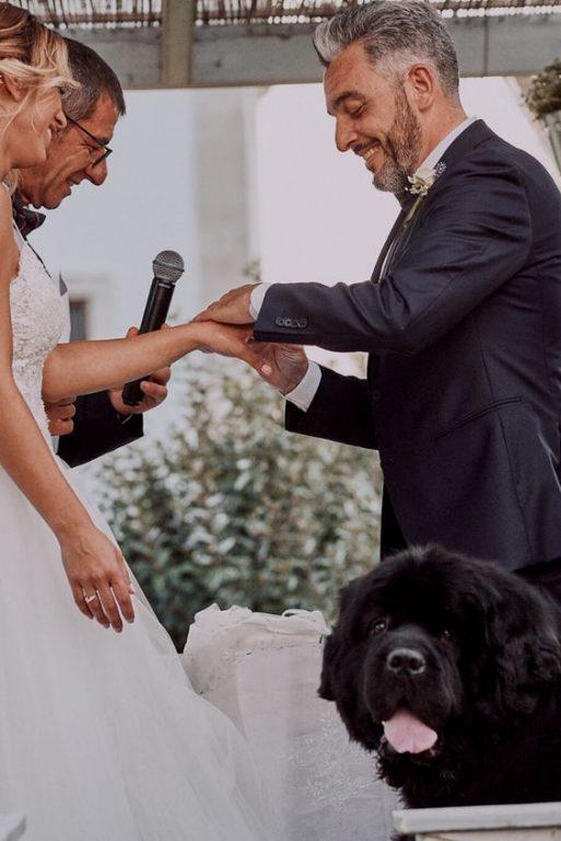 cane alla cerimonia